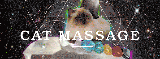 The Guide To Cat Masssage [Infographic]