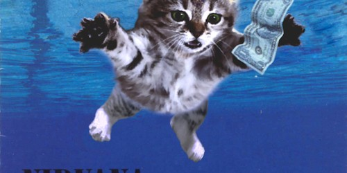 Popular Album Covers Replaced With Kittens